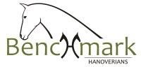 Benchmark Hanoverians