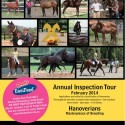 Hanoverian advert