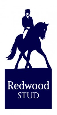 Redwood Stud