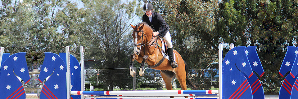 Hanoverian Horse Society of Australia