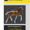 HHSA Foal Pictorial