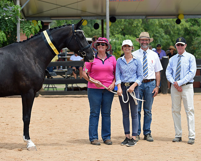 St Pr mare Remi Lady Godiva is congratulated by the classifiers, Ludwig Christmann and Kevin Lewis