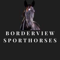 Borderview Sporthorses
